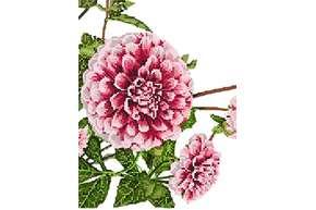 Схема для вышивки бисером POINT ART Любимые цветы, размер 19х25 см, арт. 1973