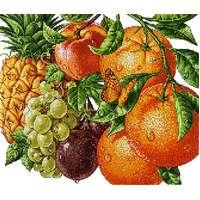 Схема для вышивки бисером POINT ART Тропические фрукты, размер 36х31 см, арт. 1985