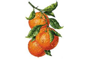 Схема для вышивки бисером POINT ART Ветка апельсина, размер 20х28 см, арт. 1826