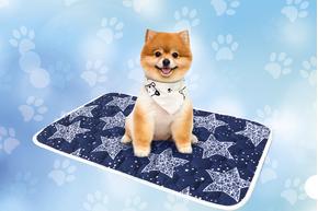 Многоразовая пеленка для собак AquaStop арт.2, размер 60х90 см