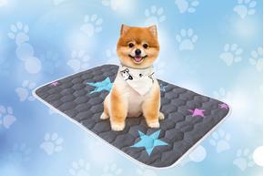 Многоразовая пеленка для собак AquaStop арт.5, размер 60х90 см