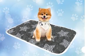 Многоразовая пеленка для собак AquaStop арт.7, размер 50х70 см