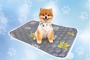 Многоразовая пеленка для собак AquaStop арт. 9, размер 90х90 см